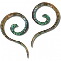 Abalone Tail Spirals