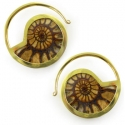 Brass and Ammonite Hoops