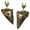 Brass Megalodon Teeth with Silver and Labradorite 1