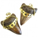 Brass Large Megalodon Tooth Weights