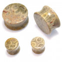 Fossil Coral Plugs