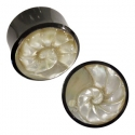 Black Horn Plugs with Mother of Pearl Nautilus Inlays
