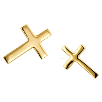 Gold Cross Nostril Screw