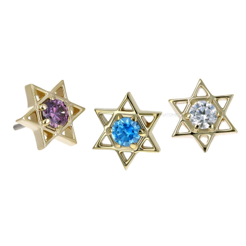 Gold Star of David End