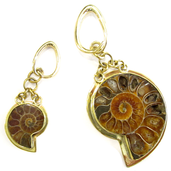 Brass Ammonite Weights