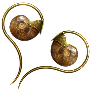 Brass and Ammonite Tail Spirals