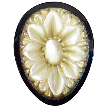 Black Horn Teardrop Plugs with Mother of Pearl Lotus Inlays