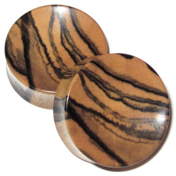 Tiger Ebony Concave Plugs