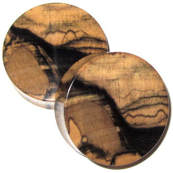Tiger Ebony Plugs
